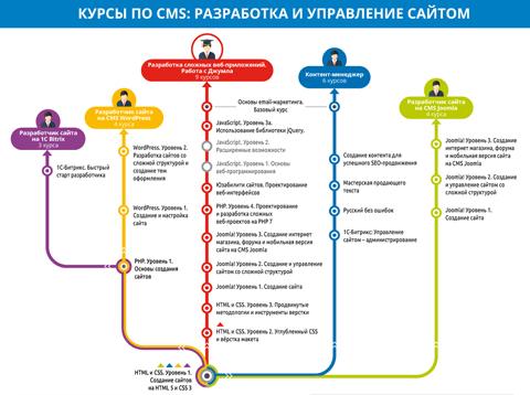 CMS: разработка и управление сайтом